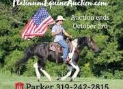 Place your bids at www.PlatinumEquineAuction.com Family safe ranch horse, gentle for any rider on trails or around the ranch! Penning, Sorting, Roping, Draftcross!!!