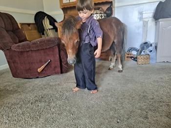 """32"""" babysitter mini pony"""