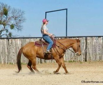 High Step Peppy - 15. 1H, 2007' dun AQHA mare