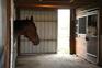 Picturesque Hilltop Equestrian Estate for sale