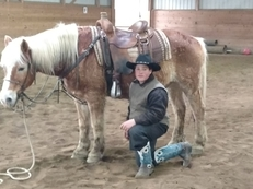 Therapy ready Haflinger... Ideal for beginner or timid rider