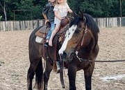 Amazing Gentle Kid Horse