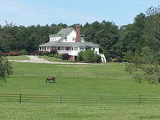 Exquiste Turnkey Equestrian Estate with custom farm house, barns, arena