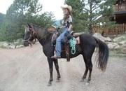 KIDS HORSE - ROCKY MOUNTAIN TRAILRIDE MARE