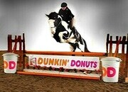 Place your bids at www.PlatinumEquineAuction.com QH/Shire Crossbred, Jumping, Dressage, Trails... Beginner Safe!!!