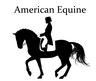 American Equine Sales