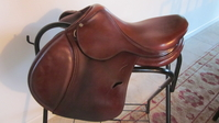 Selena Weinstock Saddle Sales