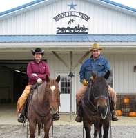 Windy Hill Farm Horses